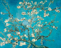 Almond Branches in Bloom mural