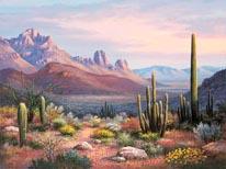 Sonoran Sunset mural