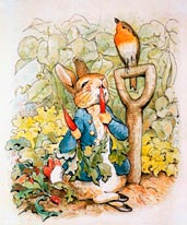 Peter Rabbit Eating Radishes mural