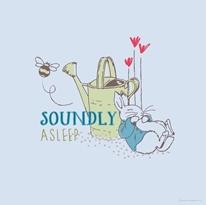 Soundly Asleep - Blue mural