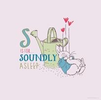 Soundly Asleep  mural