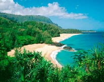 Lumahai Beach Kauai mural