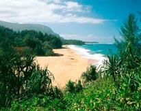Lumahai Beach II Kauai mural