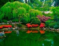 Strolling Pond Japanese Garden mural