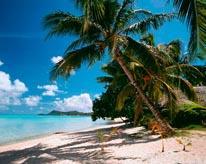 Matira Beach Bora Bora mural