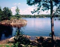 Lake In The Woods mural