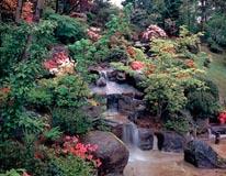 Oriental Garden mural