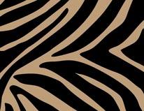 Black Zebra mural