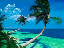 Beckoning Palms mural