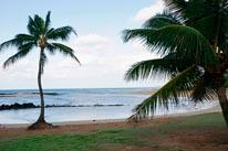 Morning In Kauai mural