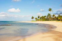 Poipu Beach Kauai mural