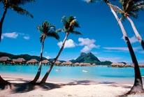 Palm Tree Beach- -Bora Bora mural