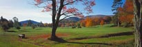 Golf Course in Autumn mural