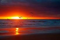 Sunrise Over Bass Straight  Godfreys Beach mural