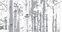 Birch Trees - Grey mural