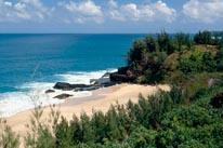 Kauai Beach Fitzsimmons mural