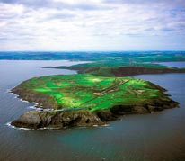Old Head-2nd Hole Aerial mural