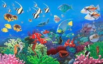 Wonders Of The Sea mural