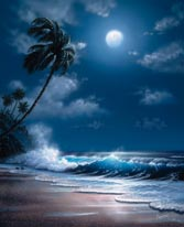 Tropical Moonlight mural