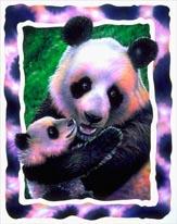 Panda Love mural