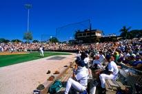 Baseball Game mural