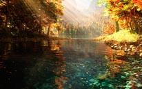 Sierra Autumn mural