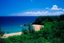 Kauai Beach Stock Photos mural