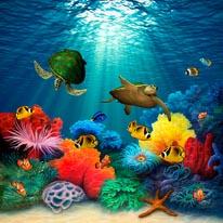 Coral Sea mural