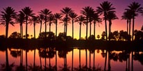 Palm Desert Sunset mural