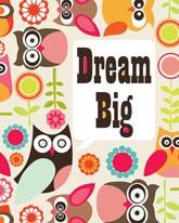 Dream Big Owl mural