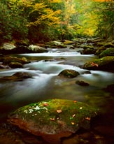 Jakes Creek Smoky Mountains mural