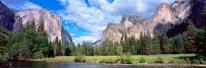 Yosemite Valley Burk mural