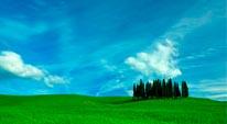 Tuscan Cyprus - Panoramic mural