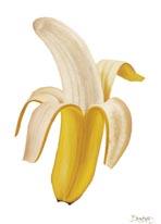 Banana Split mural