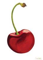 Cherry mural