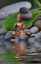 Buddha Zen Garden mural