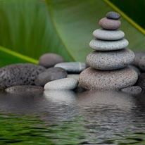 Zen Rock Pond mural