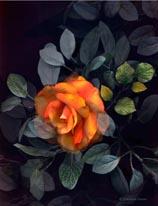 Sunset Rose mural