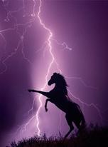 Stallion and Lightning  mural