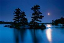 Moonlight At Dawn mural