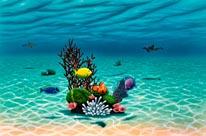 Underwater Garden mural